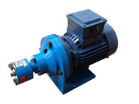 Pump Without Inbuilt Relief Valve and Flange Mounted Motor